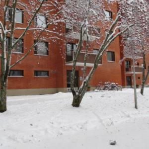 Niinivaarantie 34, Joensuu